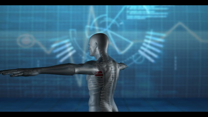 Medical video of revolving human figure