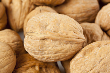 Fresh Organic Brown Walnuts