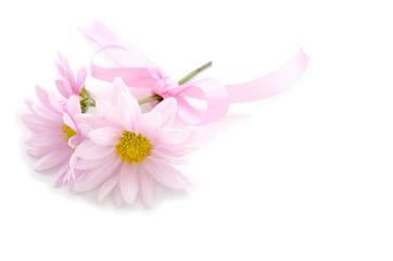 リボンで結んだ薄いピンクの菊の花々