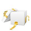 Geschenk, Geschenkpaket, Paket, Box, Deckel, offen, 3D, Vektor