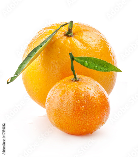 Orange and tangerine with water drops isolated on white