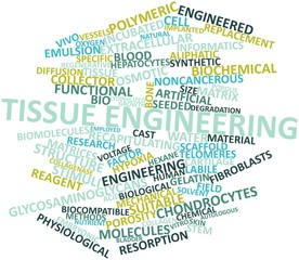 Word cloud for Tissue engineering