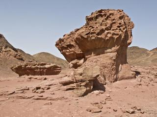 Wüste/ Felsformation