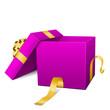 Geschenk, Geschenkpaket, Paket, Kiste, offen, Lila, Violett, 3D