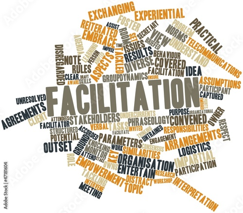 Word cloud for Facilitation