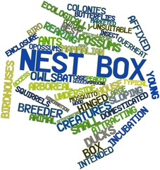 Word cloud for Nest box