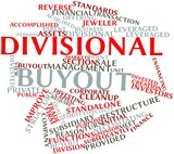 Word cloud for Divisional buyout