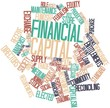 Word cloud for Financial capital