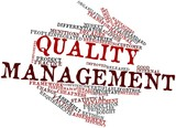 Word cloud for Quality management