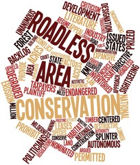 Word cloud for Roadless area conservation