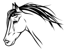 running horse head - realistic vector illustration
