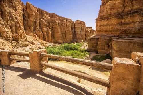 Aluminium Tunesië Canyon in the oasis of Tamerza, Tunisia