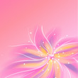 Shiny pink flower background
