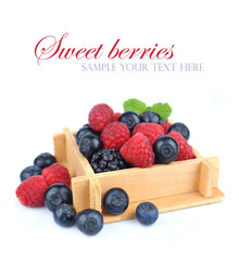 set fresh berries in box