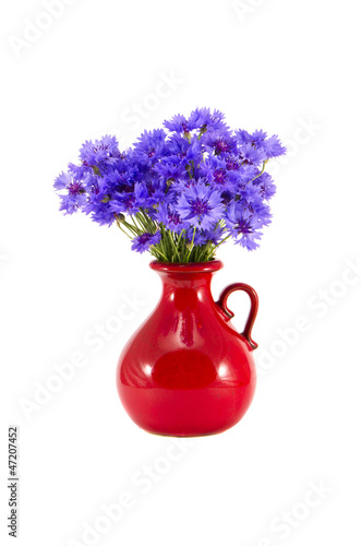 canvas print picture beautiful red ceramic vase and cornflowers on white