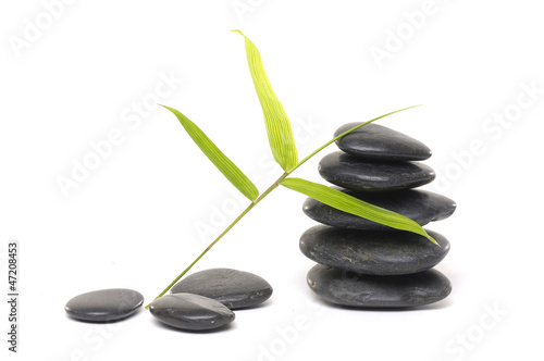 stone with bamboo leaf