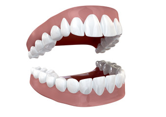 Teeth Set Open Isolated