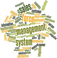 Word cloud for Sales force management system