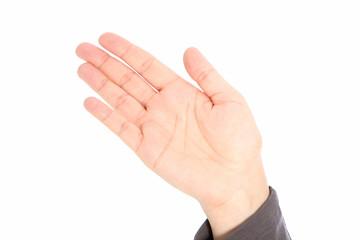 A palm, a hand