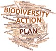 Word cloud for Biodiversity action plan