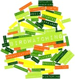 Word cloud for Birdwatching poster