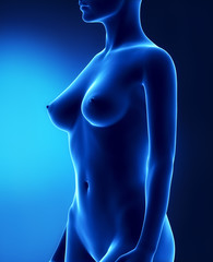 Female with beautiful breast