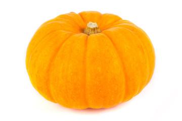 Single ripe pumpkin on white