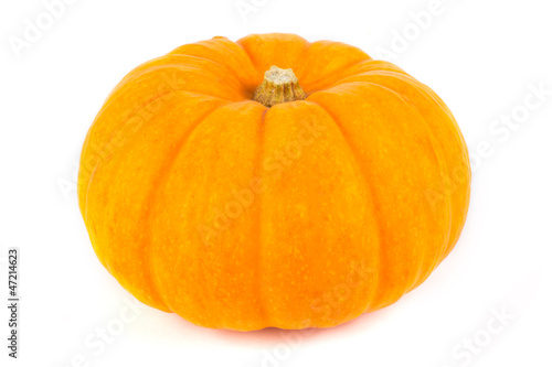 Single ripe pumpkin on white