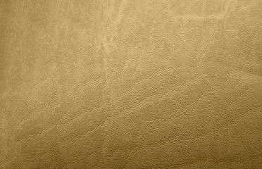 Texture pelle gold