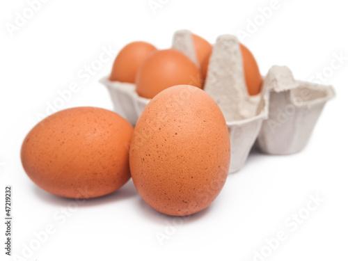 Eierkarton mit 6 Eiern