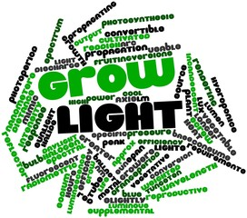 Word cloud for Grow light