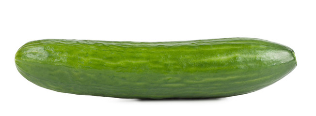 Ripe sweet green cucumber isolated on white background
