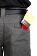 brush in back pocket close-up