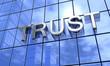 3D Fassade Blau Silber - Trust