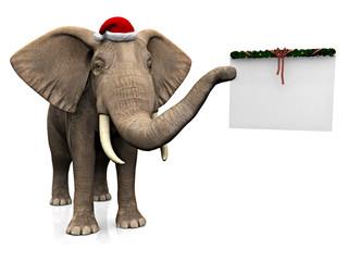 Elephant wearing Santa hat.