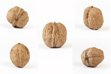 5 different views of walnuts (series)