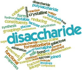 Word cloud for Disaccharide