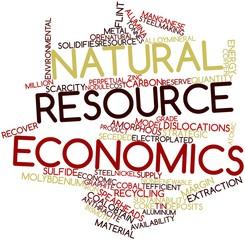 Word cloud for Natural resource economics