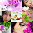 Collage of beauty, makeup and spa theme photos