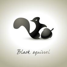 Czarna wiewiórka tło - Scoiattolo nero Fondo
