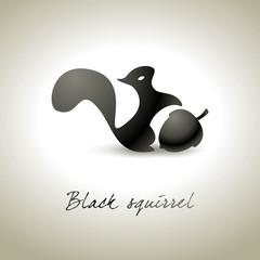 Black squirrel background - Scoiattolo nero fondo