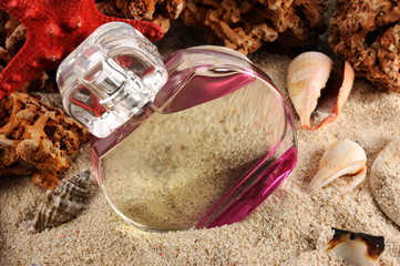 Sea Smell - Parfume - in the sea on the sand with starfish