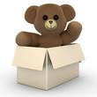 Teddy Bär aus der Schachtel