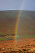 rainbow over Dartmoor