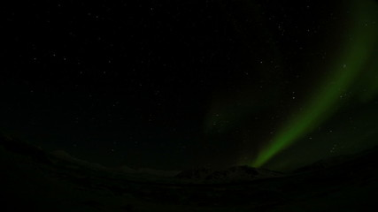 Night in the Arctic - Northern Lights