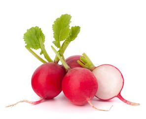 Small garden radish