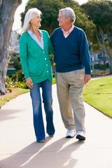 Senior Couple Walking In Park Together