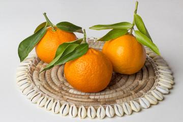 3 frische Mandarinen mit Blätter