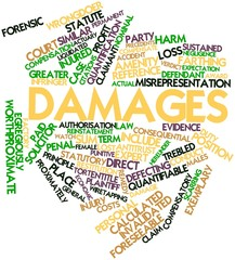 Word cloud for Damages