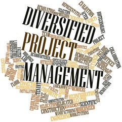 Word cloud for Diversified Project Management